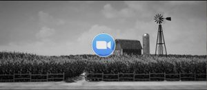 Wizard of Oz Animation Black and White Farm Landscape
